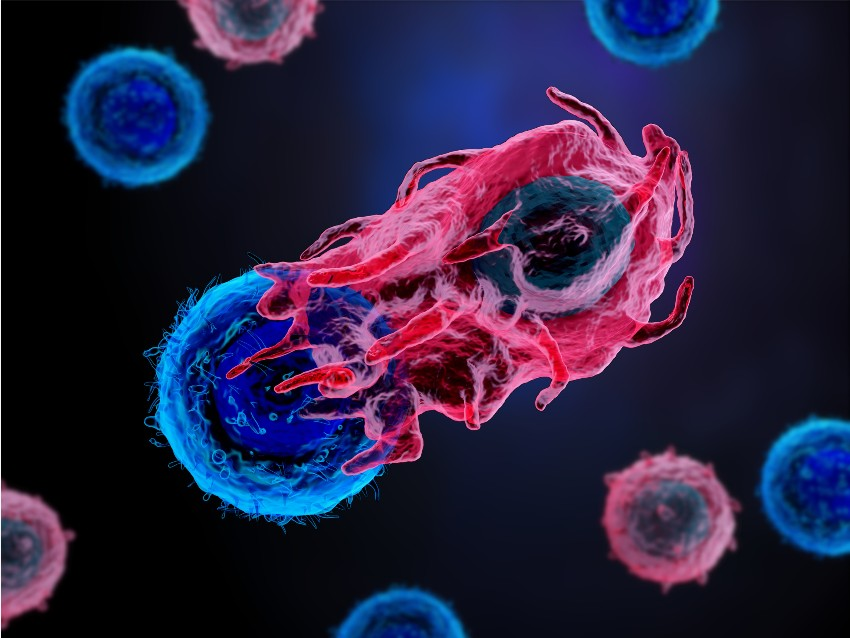 Genetics and big tech bring immunity from cancer a few steps closer